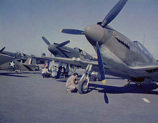 p51a rollout.jpg (24502 bytes)